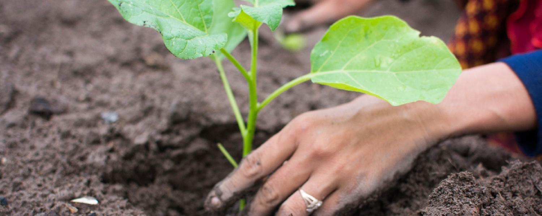GRO Garden Tools - Love your garden